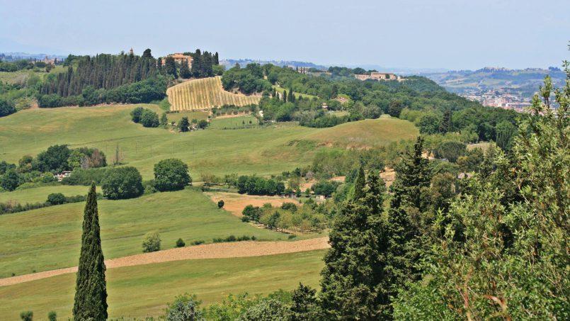 Cottage Casalecchi Tuscany Siena 125
