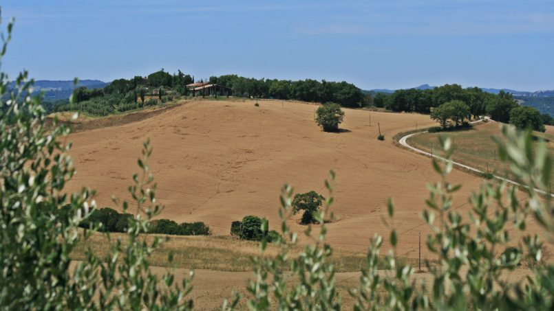 Hillside stone Villa Susino Rosso Tuscany Siena 27