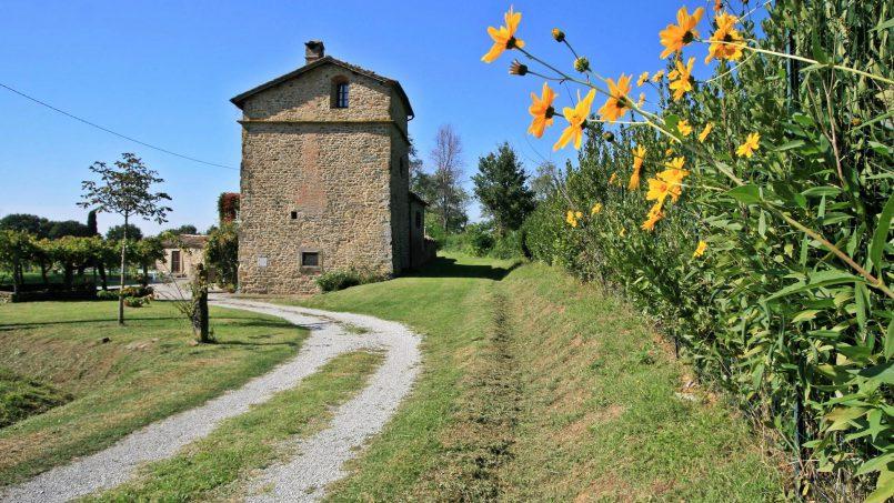 Hillside Villa Torre Montalla Tuscany Cortona 3