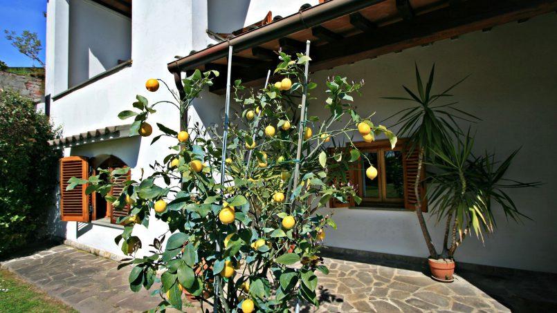 Cozy 60's Villa Grazia Tuscany Firenze 9