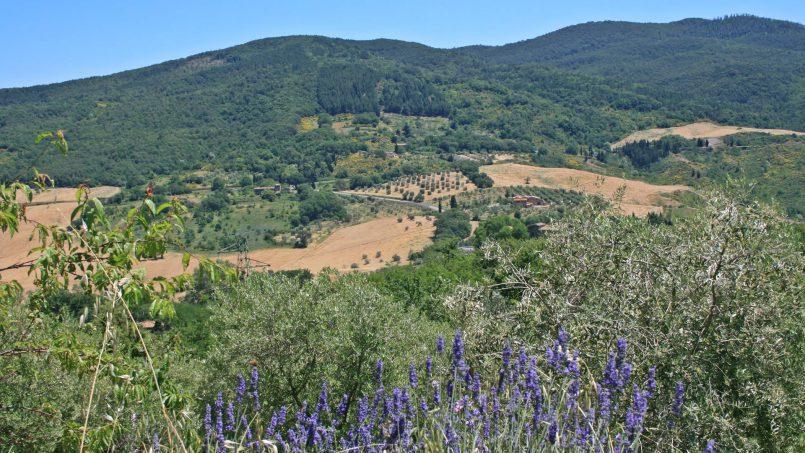 Farmhouse La Madonna Tuscany Radicondoli 30
