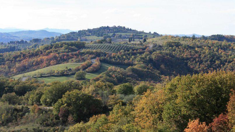 Farmhouse La Madonna Tuscany Radicondoli 35