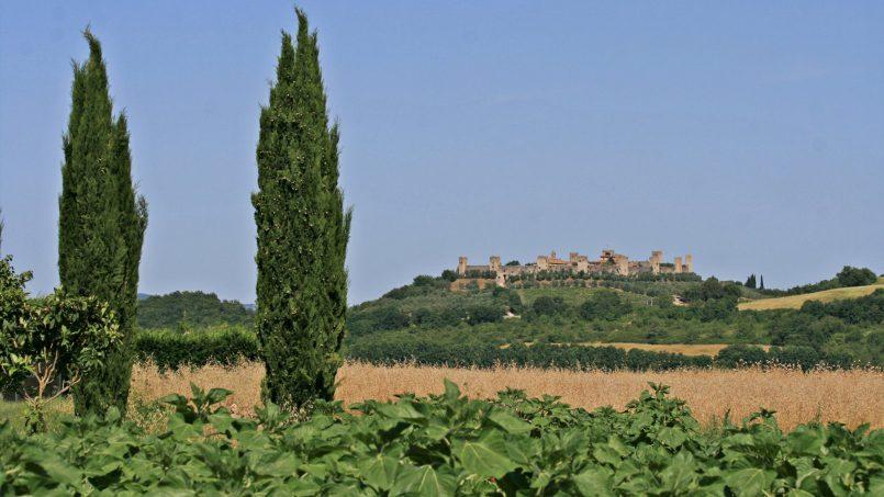 Ancient stone barn Girasole Tuscany Monteriggioni 21
