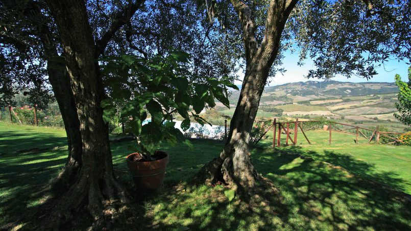 Detached Villa Virgilius Tuscany Radicondoli 14