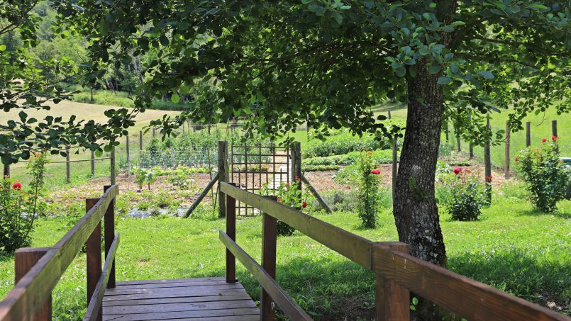 Ancient hamlet Borgo Sereno Tuscany Arezzo 35