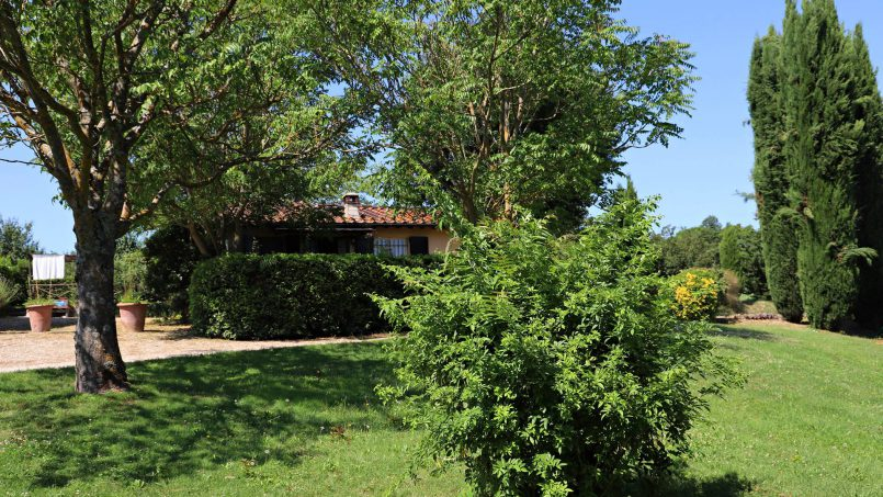 Romantic cottage Gelsomino Tuscany Casole d'Elsa 1