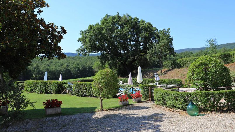 Romantic cottage Gelsomino Tuscany Casole d'Elsa 12