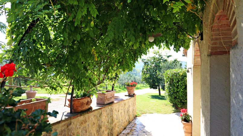 Holiday Villa old barn Peperoncino Tuscany Siena 5