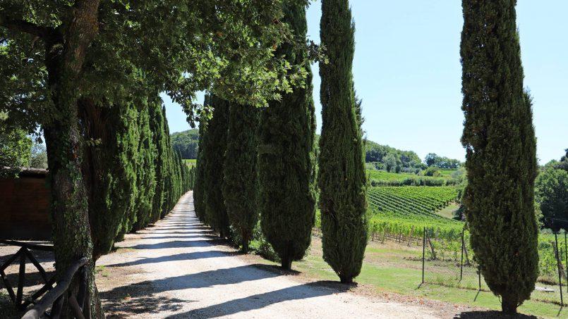 Hillside stone built Villa Insieme XVI Tuscany Siena 6