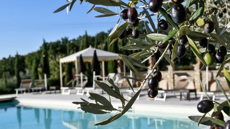 Villa with pool Torre XII Tuscany Montaione 7