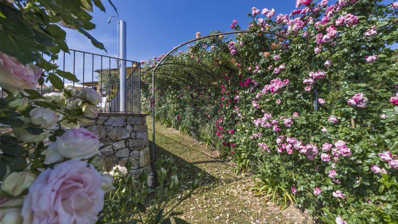 Hillside country house Villa il Roseto Tuscany Casalguidi 35