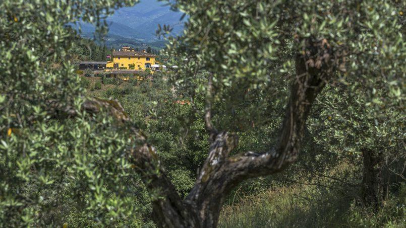 Hillside country house Villa il Roseto Tuscany Casalguidi 57