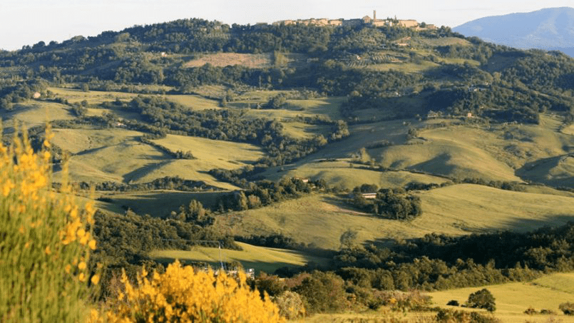 Hillside Villa Toscana Tuscany Radicondoli 1