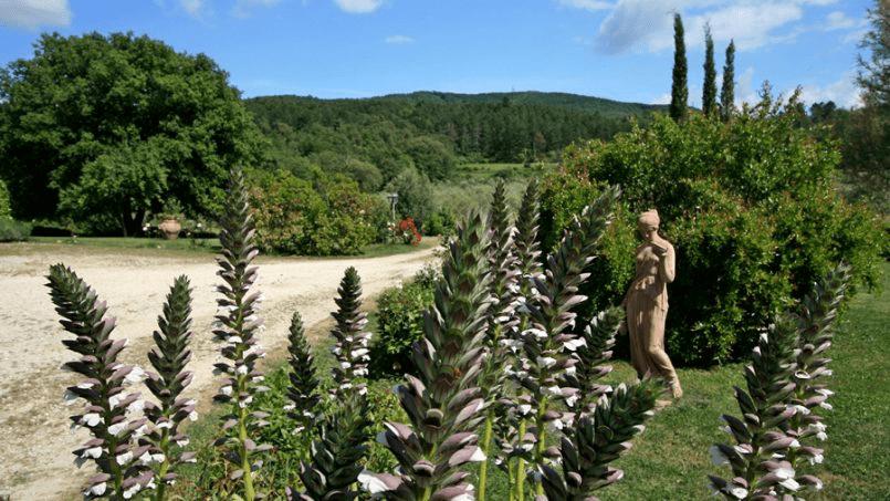 Hillside Villa Toscana Tuscany Radicondoli 76