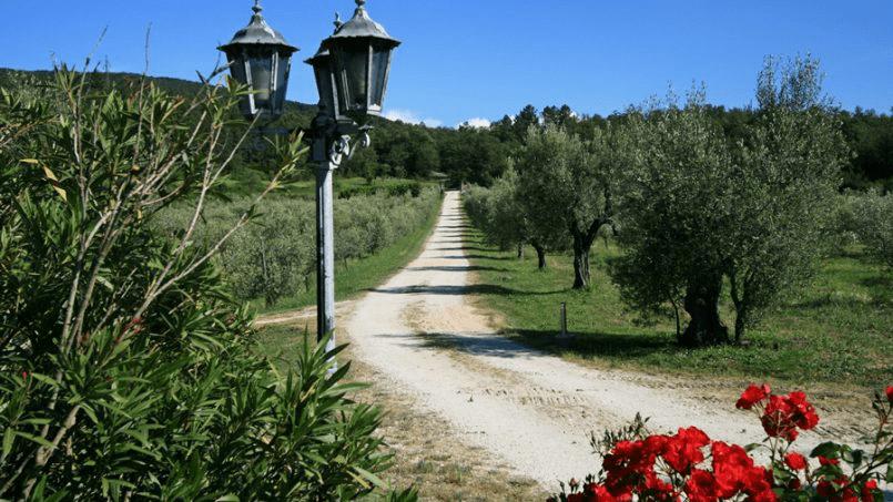 Hillside Villa Toscana Tuscany Radicondoli 77