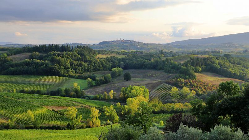 Country house Fico Nero XI Tuscany San Gimignano 37