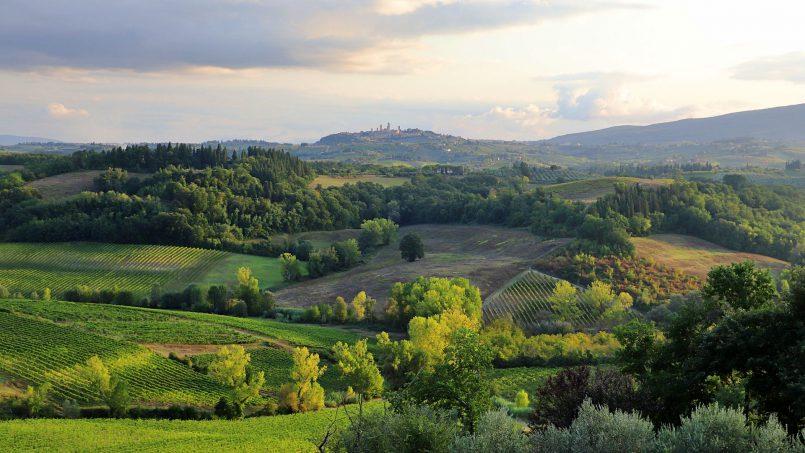 Country house Fico Nero XV Tuscany San Gimignano 37