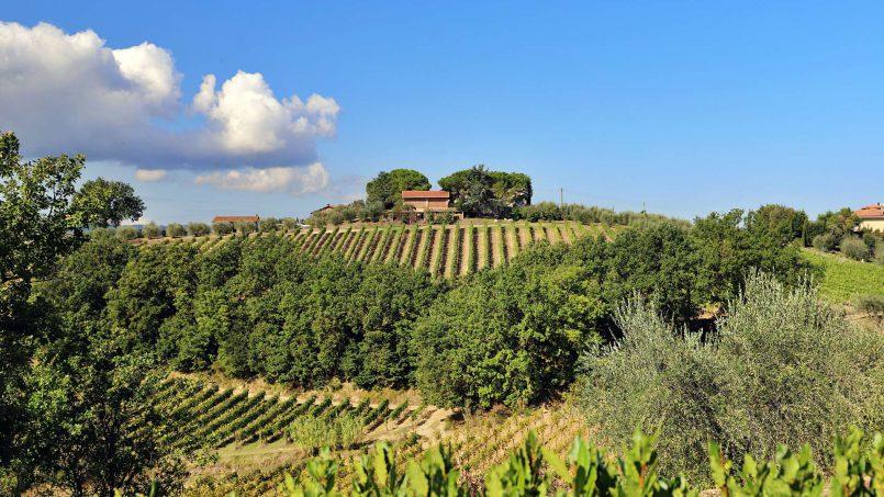 Country house Fico Nero XI Tuscany San Gimignano 9