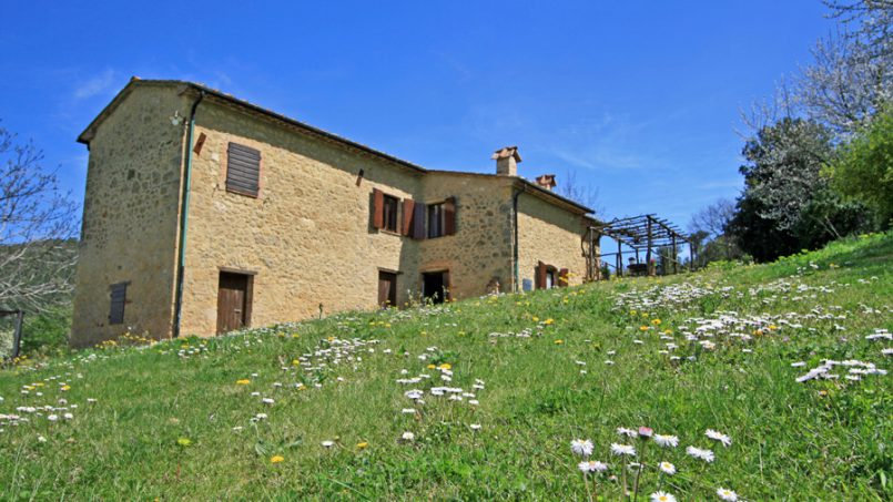 Rustic villa La Casina Tuscany Pisa 30