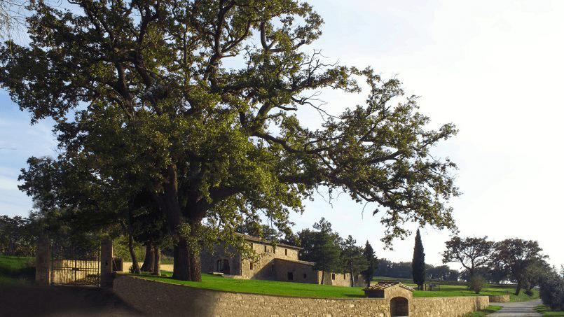 Luxury farmhouse Villa Spina Tuscany Pienza 27